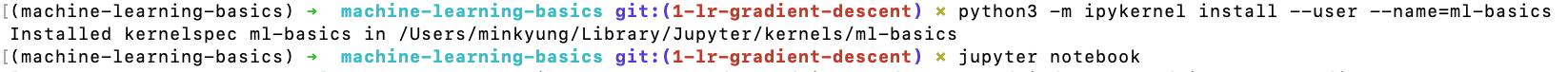 install_ipykernel_pipenv